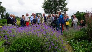 Planten En Bomen : Tuin met bijzondere planten en bomen u2013 de kloostergaarde